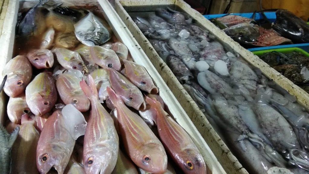 Pasar Ikan Pantai Kedonganan Bali - Dewata ID