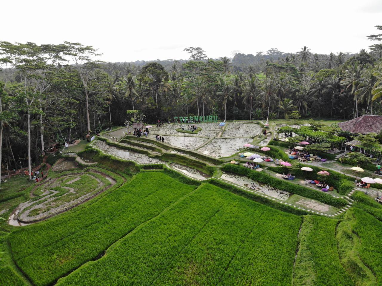Green Kubu Cafe Tegallalang Ubud Bali - Dewata ID