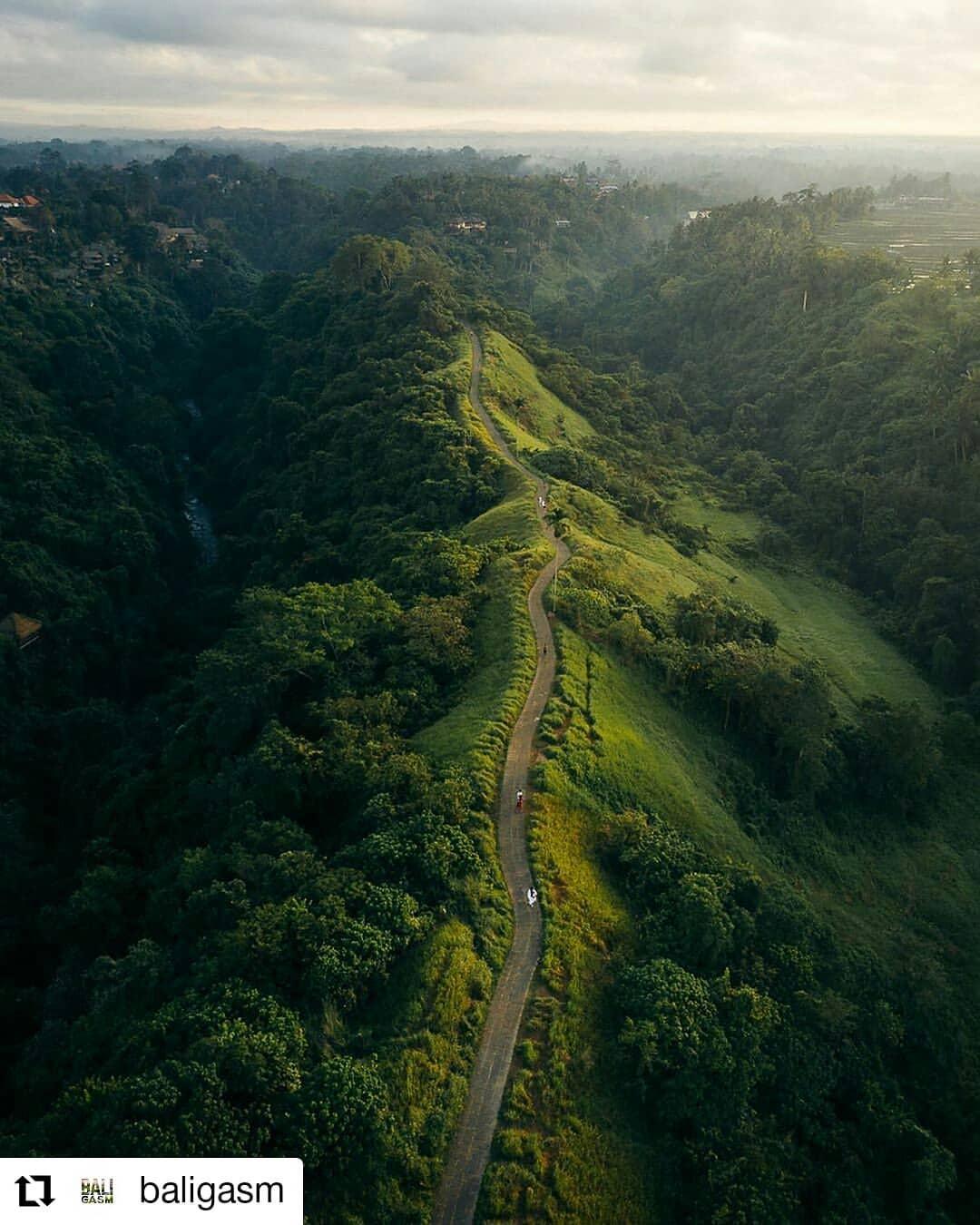 Wisata bukit Campuhan Ubud Bali - Dewata ID.jpg